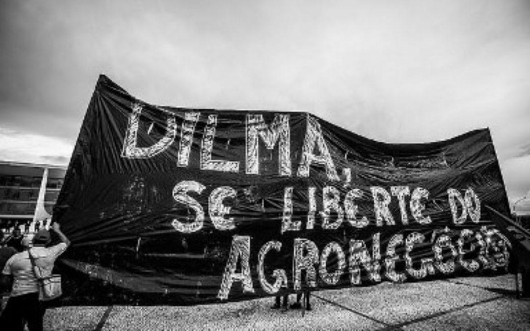 Organizações pressionam presidente Dilma contra o uso de agrotóxicos